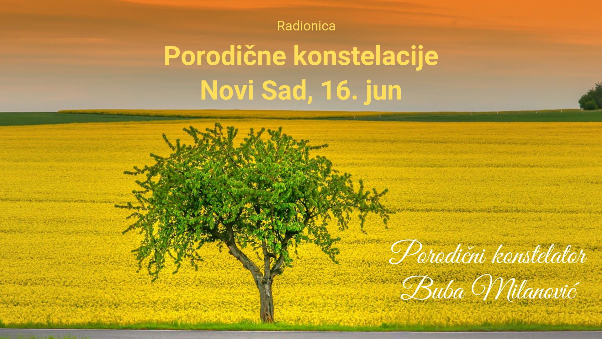 Porodične konstelacije Novi Sad, 16. jun